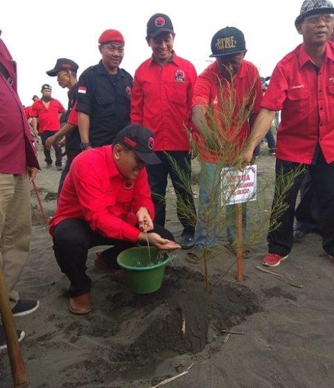 Ketua DPC PDI Perjuangan Cilacap, Taufik Nurhidayat saat menanam pohon di Tepi Pantai Sodong, Adipala Cilacap.