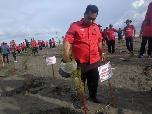Bendahara DPC PDI Perjuangan Cilacap, Puwanto ST menyiram tanaman.