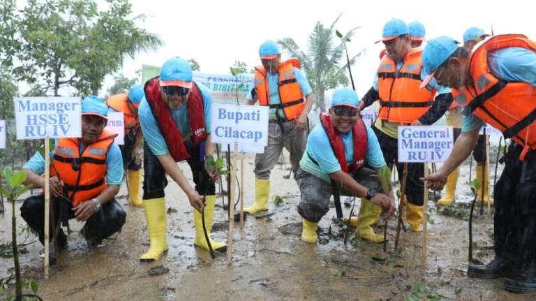 TANAM : Bupati Cilacap dan GM Pertamina RU IV menanam bibit mangrove di pulau Momongan. (Istimewa)