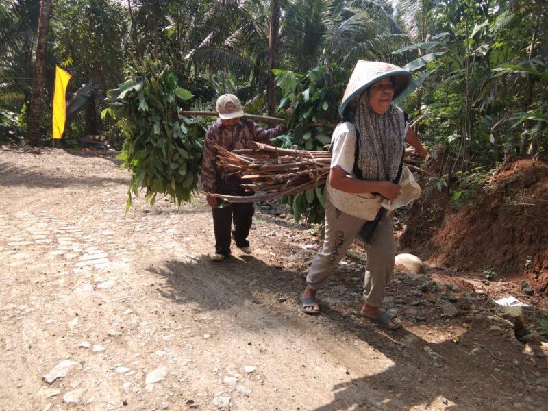 Warga Desa Petahunan membawa pakan ternak dengan dipikul sebelum jalan dibangun.