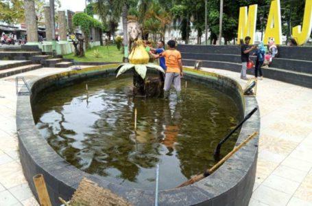 Kolam Taman Kota Majenang Penuh Lumut