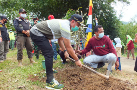 1.000 Pohon Ditanam di Tayem Timur