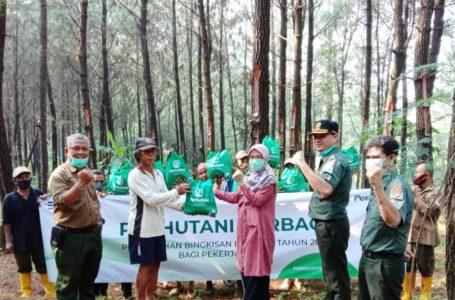 Perhutani Bagikan 4.180 Paket Sembako kepada Penyadap Pinus